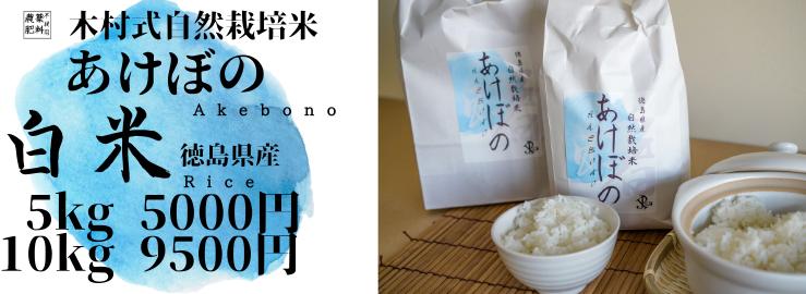 徳島県で木村式自然栽培によって育てたお米