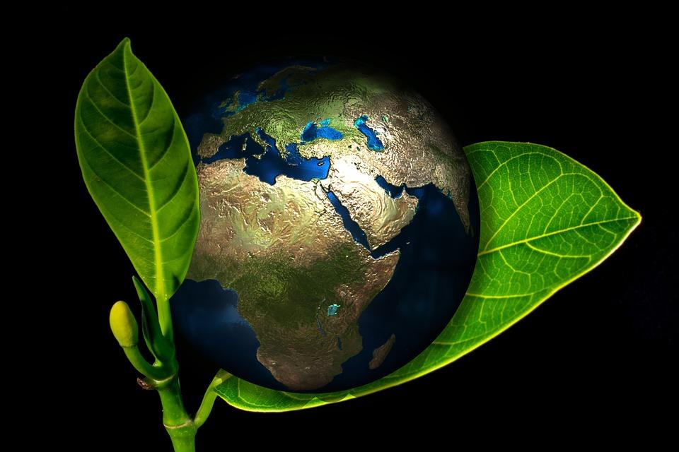 地球環境を守るイメージ写真